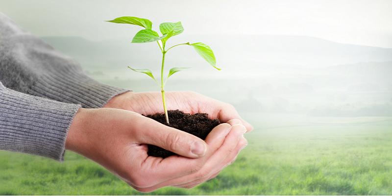 Nachhaltiges Wachstum: Mit Interim Managern Chancen finden und nutzen
